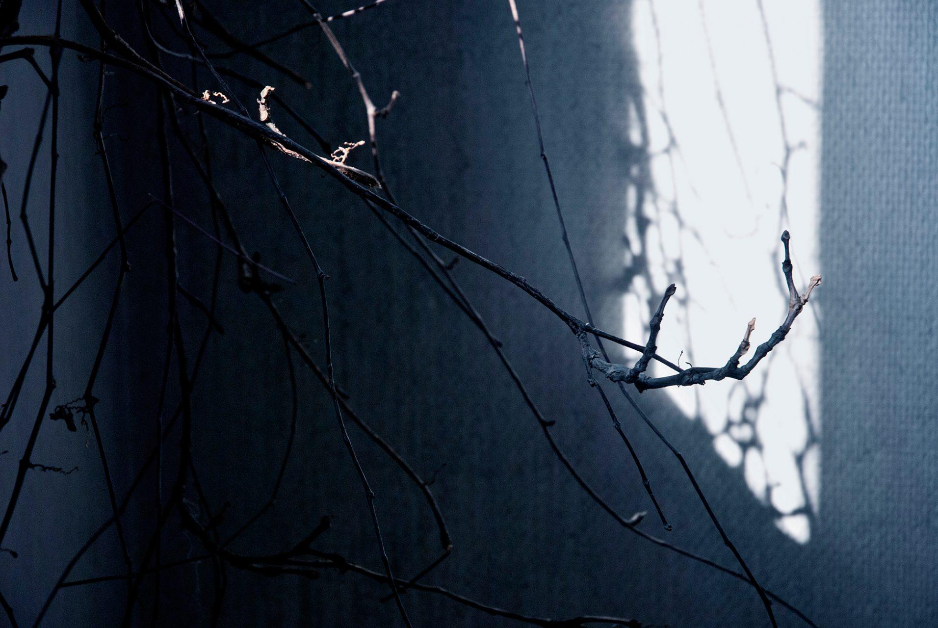 sara_de_jesus_bento_branches_01